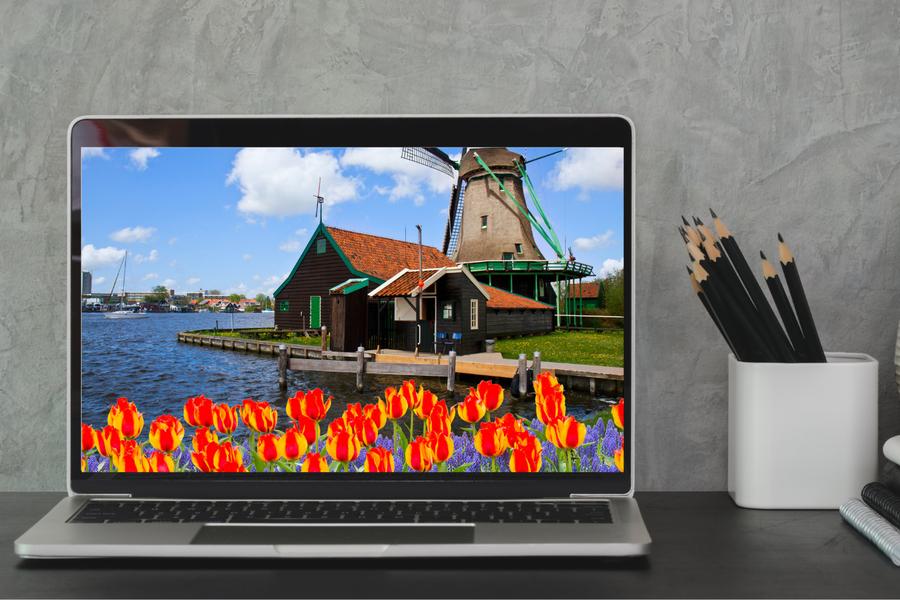 Online Ik hou van Holland Quiz