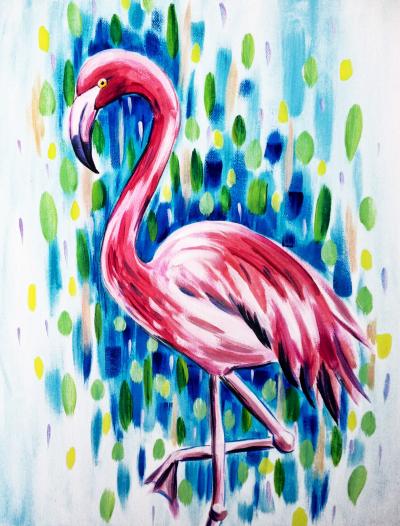 Dieren Flamingo