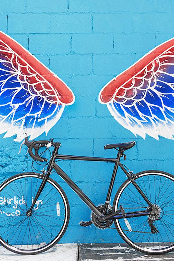 Alkmaar graffiti muurschildering