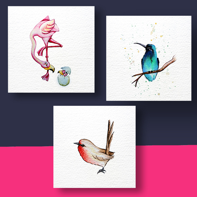Aquarel Compilatie Vogels