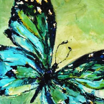 Dieren Vlinder
